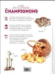 Guide encyclopédique des champignons - 4ème de couverture - Format classique