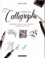 Initiation à la calligraphie ; alphabets, lettres ornées, entrelacs... expliqués pas à pas - Couverture - Format classique