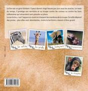 PEAU, POILS ET PATTES ; le lion - 4ème de couverture - Format classique