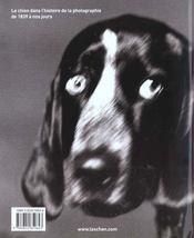Thousand dogs - va - 4ème de couverture - Format classique