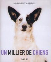 Thousand dogs - va - Couverture - Format classique