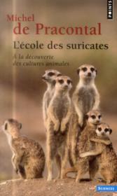 L'école des suricates ; à la découverte des cultures animales - Couverture - Format classique