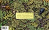Mémoires de la terre - 4ème de couverture - Format classique