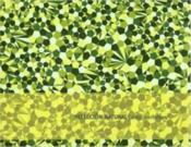 Alex Dorfsman Natural Selection /Anglais - Couverture - Format classique