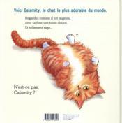 Calamity chat ! - 4ème de couverture - Format classique