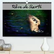 Reve de liberte(premium, hochwertiger din a2 wandkalender 2020, kunstdruck in hochglanz) - envolons - Couverture - Format classique