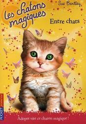 Les chatons magiques T.3 ; entre chats - Intérieur - Format classique