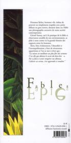 Fables ; reflets de ma fontaine - 4ème de couverture - Format classique