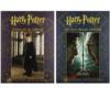 Pack exclusif Harry Potter : 2 lots de 40 affiches détachables