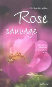 Rose Sauvage - Plante Medicinale - Intérieur - Format classique