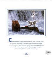 Ours ; nobles et solitaires - 4ème de couverture - Format classique
