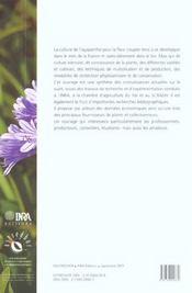 L'agapanthe - 4ème de couverture - Format classique