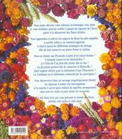 Bouquets secs jardin salon - 4ème de couverture - Format classique