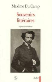 Souvenirs littéraires - Couverture - Format classique
