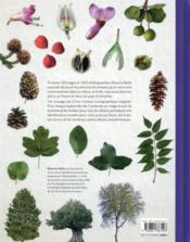 Dictionnaire visuel des arbres et arbustes communs - 4ème de couverture - Format classique