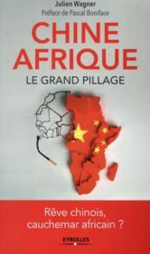 Chine Afrique ; le grand pillage - Couverture - Format classique
