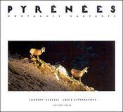 Pyrénées ; montagnes sauvages - Intérieur - Format classique