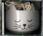 Coffret chat pousse et chat décore - Couverture - Format classique