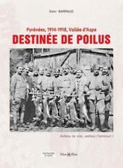 Pyrénées 1914-1918, Vallée d'Aspe, destinée de poilus - Couverture - Format classique