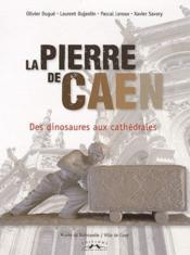 La pierre de Caen ; des dinosaures aux cathédrales - Couverture - Format classique