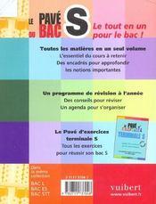 Les Paves Du Bac - 4ème de couverture - Format classique