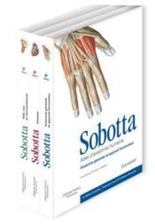 Atlas d'anatomie humaine(6e édition) - Couverture - Format classique