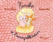 Pomelo et l'incroyable trésor - Couverture - Format classique