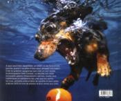 Chiens sous l'eau - 4ème de couverture - Format classique