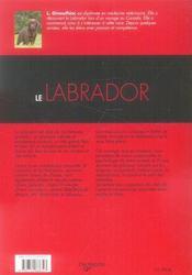 Le labrador - 4ème de couverture - Format classique