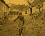 Raymond Depardon, rural - 4ème de couverture - Format classique