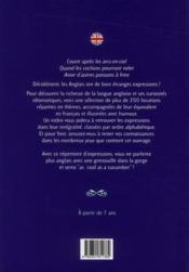 Petit guide des expressions en anglais - 4ème de couverture - Format classique