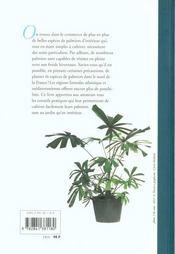 Palmiers D'Interieur & D'Exterieur - 4ème de couverture - Format classique