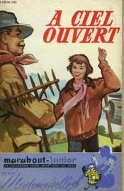 A Ciel Ouvert - Amelia Earhart, Heroine Of Thr Skies - Couverture - Format classique