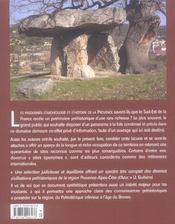Grandes decouvertes en prehistoire les - 4ème de couverture - Format classique