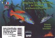8 plaquettes immergeables découverte de la vie sous-marine de l'Atlantique, de la Manche et de la mer du Nord ; poissons, crustacés, invertébrés... ; guide d'identification - Couverture - Format classique