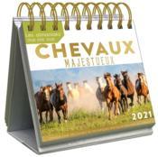 Le grand almaniak chevaux majestueux (édition 2021) - Couverture - Format classique