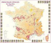 Principaux cépages des vignobles de France - Intérieur - Format classique
