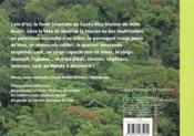 La fourmi et le paresseux, histoires de la forêt lointaine - 4ème de couverture - Format classique