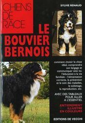 Bouvier Bernois - Intérieur - Format classique