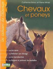 Chevaux et poneys - Intérieur - Format classique