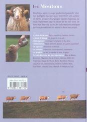 Les moutons - 4ème de couverture - Format classique