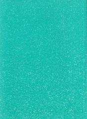 Fleurs D'Ombre - 4ème de couverture - Format classique