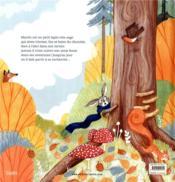 Courage, petit lapin ! - 4ème de couverture - Format classique