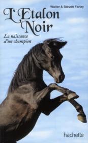 L'étalon noir ; la naissance d'un champion - Couverture - Format classique