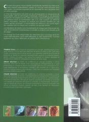 Voies D'Abord En Chirurgie Ostheopatique Articulaire Chez Le Chien - 4ème de couverture - Format classique