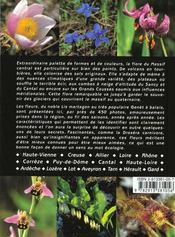 Fleurs familieres et meconnues du massif central - 4ème de couverture - Format classique