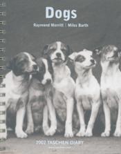 Dr-02 dogs 2002 - Couverture - Format classique