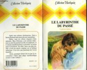 Le Labyrinthe Du Passe - The Fire And The Ice - Couverture - Format classique