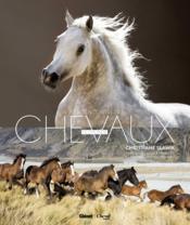 Christiane Slawik ; à la rencontre des chevaux - Couverture - Format classique