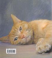 Reves de chats - 4ème de couverture - Format classique
